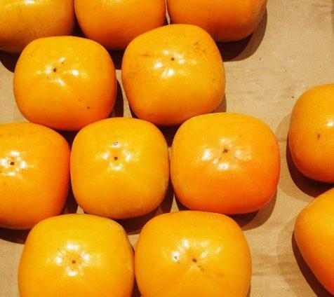 日本の伝統的塗料「柿渋」ってどんな物?